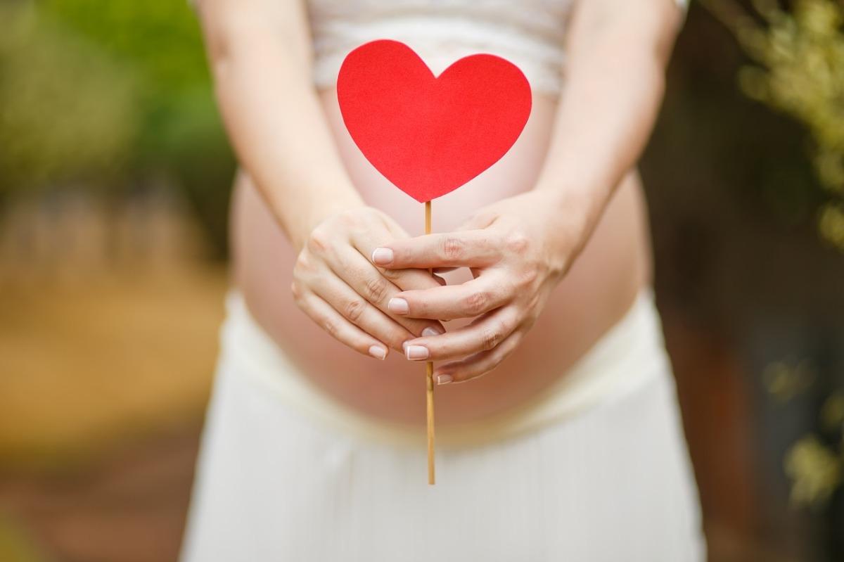 pregnant-woman-1910302_1280